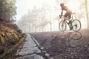 Ulms Kleine Spatzen –Race Across America –Blog, Post Image Fahrradfahrer auf einer Straße im nebeligen Wald